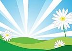 7 ways to reduce the weakening of the spring