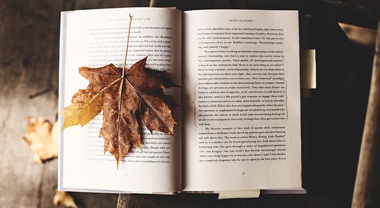 libro studio appunti